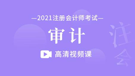 2021年注册会计师-审计(录播)
